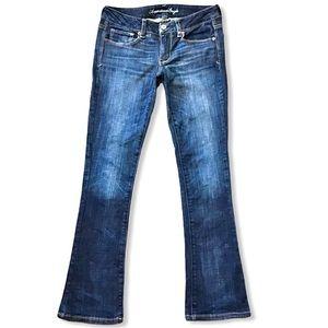 AE | Skinny Kick Stretch Jeans Low Rise 29x31